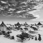 驯鹿森林图片集Genesis{摄影集5#}创世纪之西伯利亚的图片 第2张