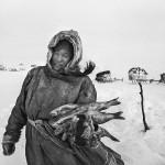 驯鹿森林图片集Genesis{摄影集5#}创世纪之西伯利亚的图片 第5张