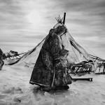 驯鹿森林图片集Genesis{摄影集5#}创世纪之西伯利亚的图片 第7张