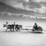 驯鹿森林图片集Genesis{摄影集5#}创世纪之西伯利亚的图片 第8张