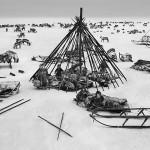 驯鹿森林图片集Genesis{摄影集5#}创世纪之西伯利亚的图片 第17张