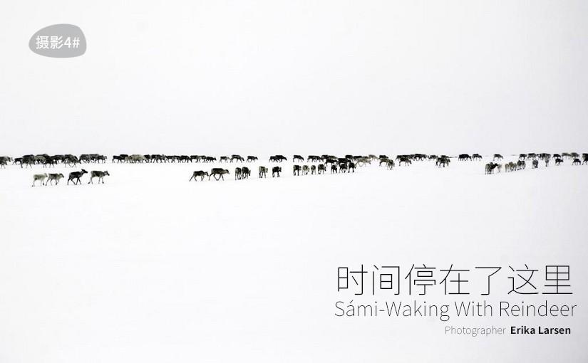 驯鹿森林图片集Erika Larsen{摄影集4#}时间停在了这里的图片