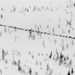 驯鹿森林图片集Genesis{摄影集5#}创世纪之西伯利亚的图片 第13张