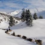 驯鹿森林图片集Becoming a Man: Tracking the White Reindeer{摄影集2#}TAIGA 泰加林的图片 第21张
