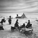 驯鹿森林图片集Genesis{摄影集5#}创世纪之西伯利亚的图片 第19张