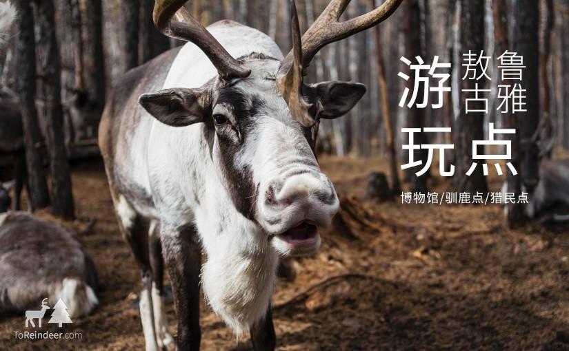 驯鹿森林游记/攻略{敖鲁古雅初行攻略}游玩点的图片