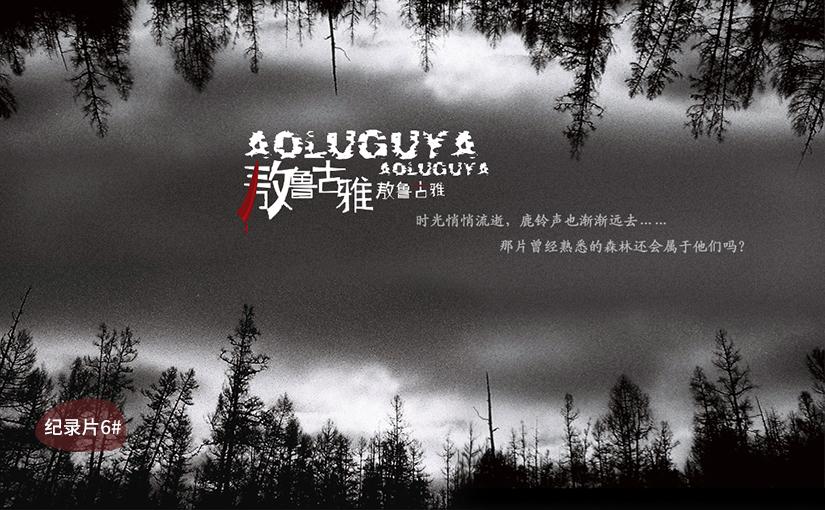 驯鹿森林电影/纪录片/舞台剧东林旷野{纪录片8#}鹿殇的图片 第8张