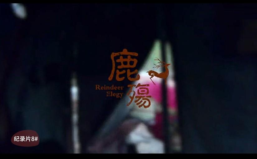 驯鹿森林电影/纪录片/舞台剧东林旷野{纪录片8#}鹿殇的图片