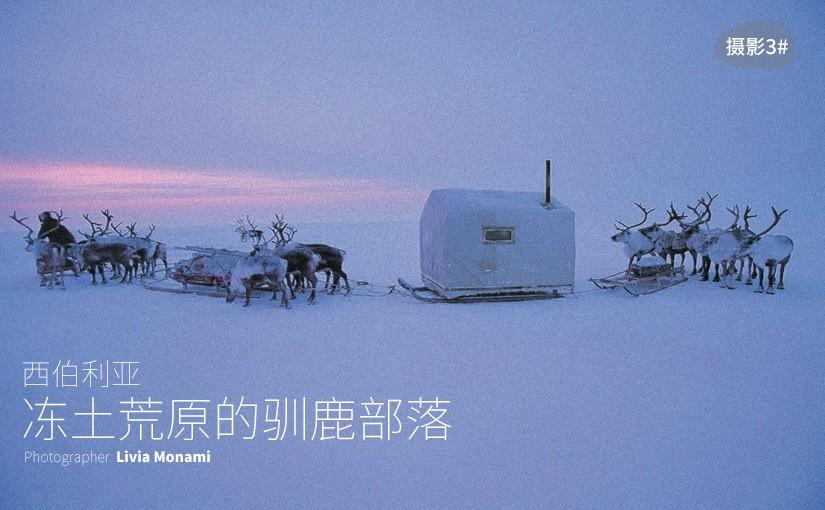 驯鹿森林图片集dolgan{摄影集3#}冻土荒原的驯鹿部落的图片