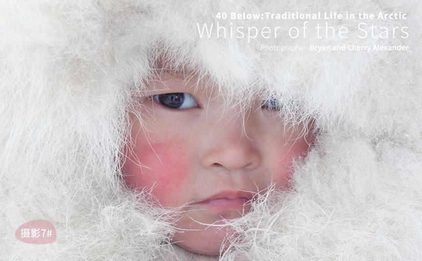 驯鹿森林图片集Samoyeds{摄影集7#}零下40度的冰雪日常的图片