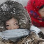 驯鹿森林图片集Arctic{摄影集9#}驯鹿牧民节的盛况图记的图片 第13张
