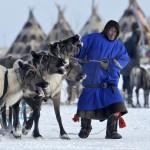 驯鹿森林图片集Arctic{摄影集9#}驯鹿牧民节的盛况图记的图片 第4张