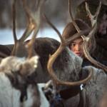 驯鹿森林图片集Arctic{摄影集9#}驯鹿牧民节的盛况图记的图片 第5张