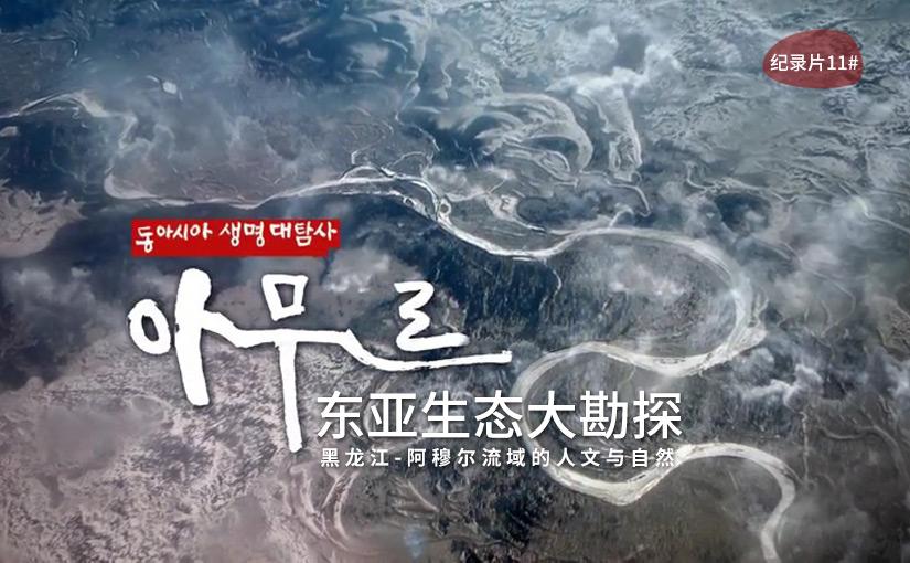 驯鹿森林电影/纪录片/舞台剧amur{纪录片11#}黑龙江阿穆尔流域-东亚生态大勘探的图片