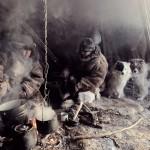 驯鹿森林图片集before they pass away{摄影集14#} 从未被俄国征服的原始部落的图片 第6张