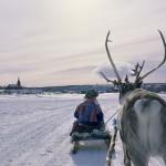 驯鹿森林图片集Norway{摄影集13#}同一镜头下的两个驯鹿民族的图片 第10张