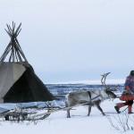 驯鹿森林图片集Norway{摄影集13#}同一镜头下的两个驯鹿民族的图片 第12张