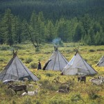 驯鹿森林图片集Norway{摄影集13#}同一镜头下的两个驯鹿民族的图片 第4张