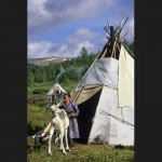 驯鹿森林图片集Norway{摄影集13#}同一镜头下的两个驯鹿民族的图片 第7张