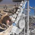 驯鹿森林书籍Alaska{书影8#} 未完成的「回家」路的图片 第12张