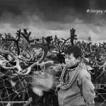 驯鹿森林图片集Nenets{摄影集12#}北极边城的传统与现代的图片 第29张