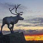 驯鹿森林图片集Nenets{摄影集12#}北极边城的传统与现代的图片 第43张