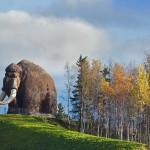 驯鹿森林图片集Nenets{摄影集12#}北极边城的传统与现代的图片 第44张