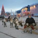 驯鹿森林图片集Nenets{摄影集12#}北极边城的传统与现代的图片 第46张
