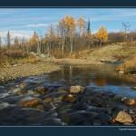 驯鹿森林图片集Nenets{摄影集12#}北极边城的传统与现代的图片 第9张