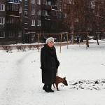 驯鹿森林图片集reindeer{摄影集16#}那趟西伯利亚的意外之旅的图片 第13张
