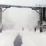 驯鹿森林图片集reindeer{摄影集16#}那趟西伯利亚的意外之旅的图片 第16张