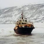 驯鹿森林图片集reindeer{摄影集16#}那趟西伯利亚的意外之旅的图片 第17张