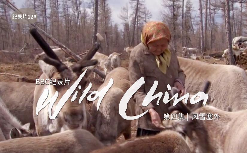 驯鹿森林电影/纪录片/舞台剧bbc{纪录片12#}BBC纪录片Wild China的图片