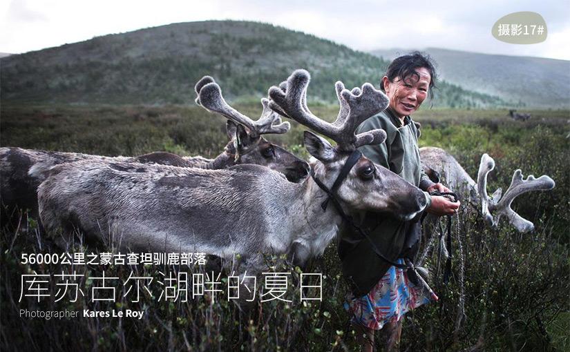 驯鹿森林图片集56000km{摄影集17#}库苏古尔湖畔的夏日的图片