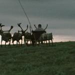 驯鹿森林电影/纪录片/舞台剧estonia{纪录片14#}文艺总统的民族影像志的图片 第14张