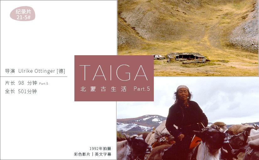 驯鹿森林电影/纪录片/舞台剧darkhad{纪录片21-5#} TAIGA 北蒙古生活Ⅴ的图片